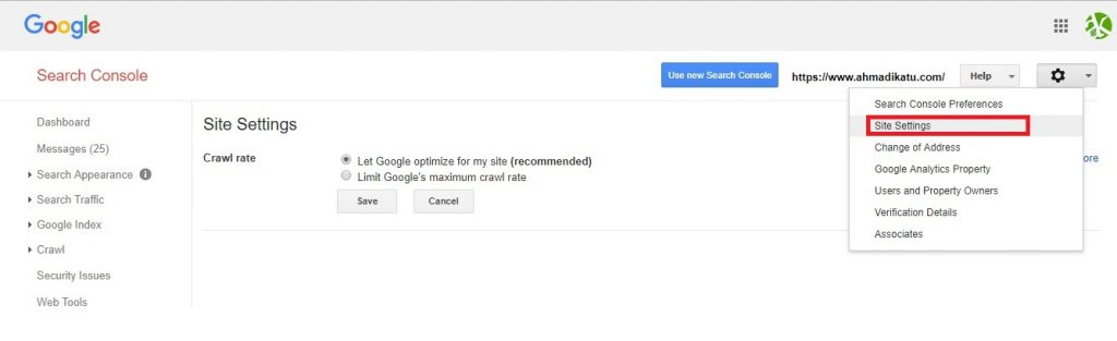 Site setting pada Google Webmaster Tools